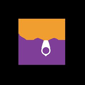 PAVE AF Website Logo 300x300 W Buffer